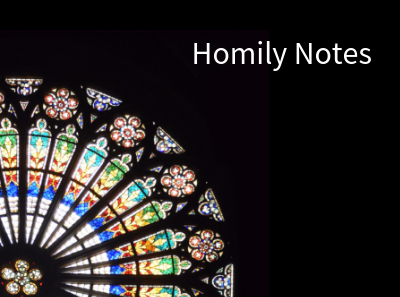 Homily Notes