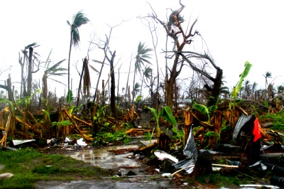 Devastation after cyclone      iStock Photo ©acrylik