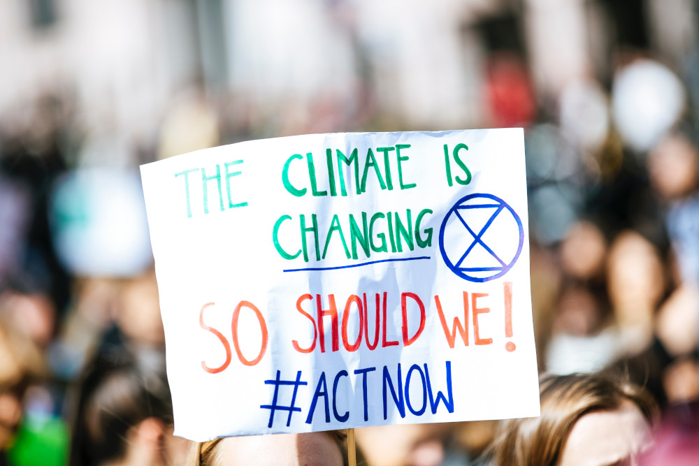Homily Notes for Climate Protests